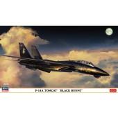 Hasegawa F-14A Tomcat Black Bunny
