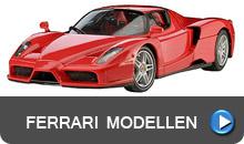 Ferrari Bouwdozen van Sportwagens tot F1 en verf
